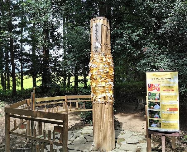 土竜が祀られている御柱の風景