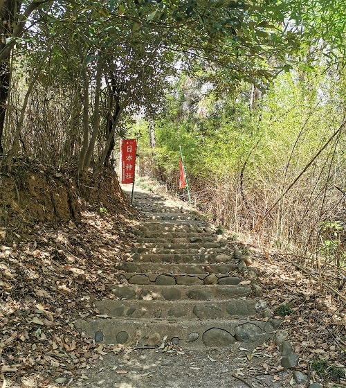 石段の参道の風景