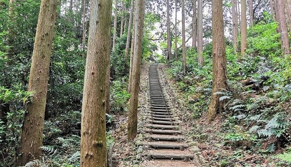 急な階段の山道風景