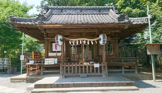 川越熊野神社の御朱印!ご利益を得る為に銭を洗って金運アップ!蛇は・・・
