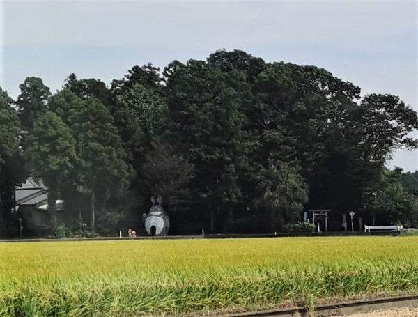 離れた場所から撮影したトトロと一の鳥居の風景