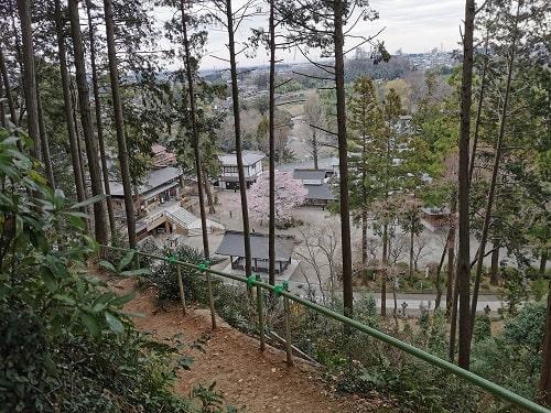 水天宮に行く山道を振り返ると小さな高麗神社と桜が見える風景