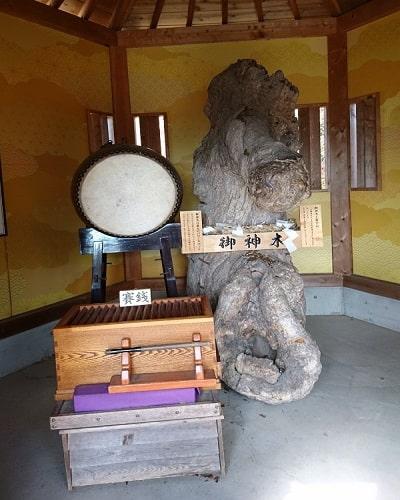 八雲神社の凄いご利益のある御神木が祀られている風景