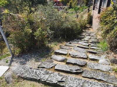 参道の石段風景