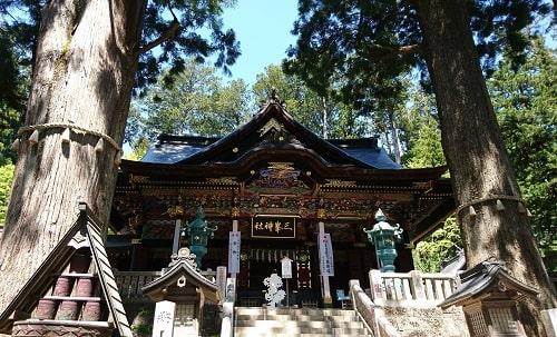 後ろに拝殿が見える御神木の風景