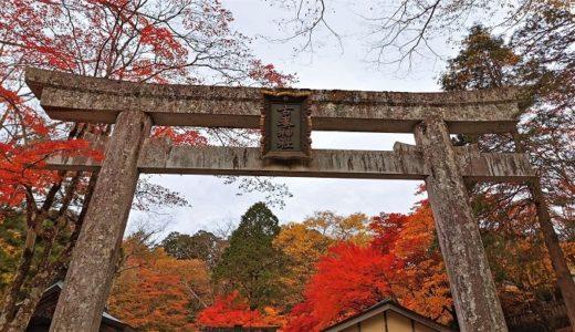 栃木県「古峯神社」迫力ある天狗御朱印が大人気!境内の様子は紅葉画像