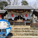 青いだるまと拝殿の風景