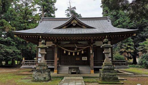 「大宮住吉神社」坂戸市にも東照宮の御朱印があった!駐車場に猫ちゃん