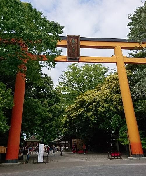 川越氷川神社の大鳥居画像