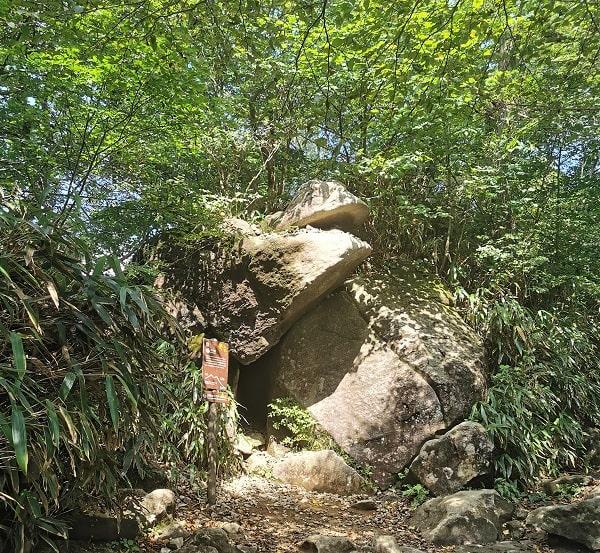 ガマガエルに似ている奇石