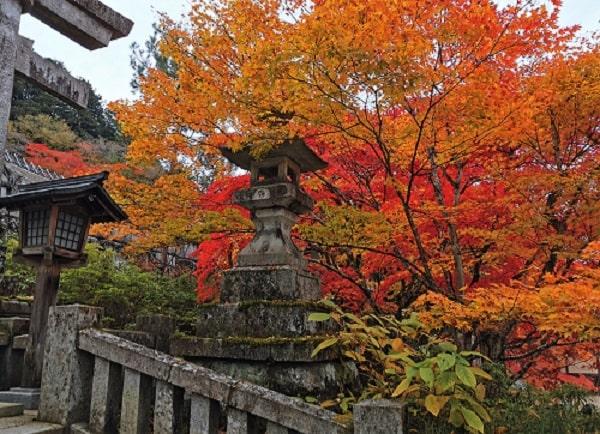石段の途中にある灯籠と紅葉の風景
