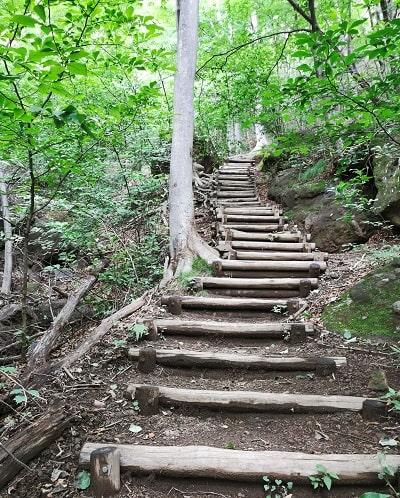 山道途中が階段に整備されている風景