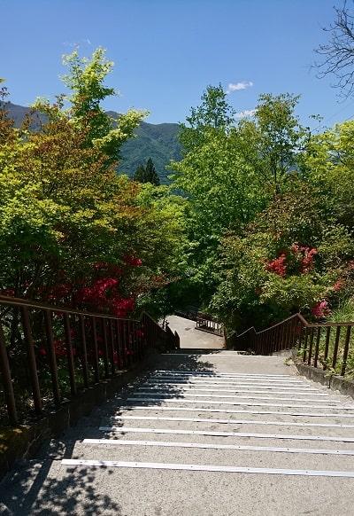 売店の近くにある駐車場にむかう階段と木々と山の風景