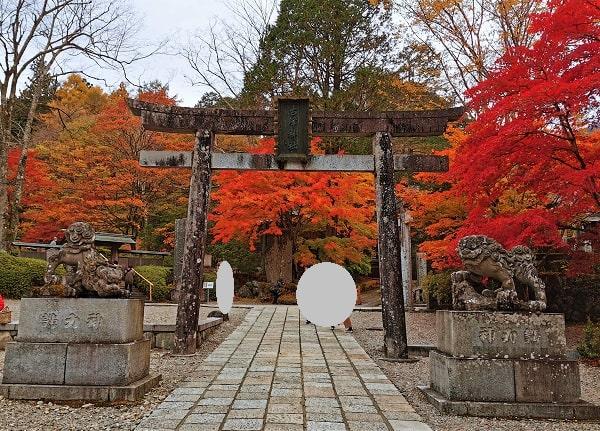 赤く色づいた紅葉と4番目の鳥居の風景