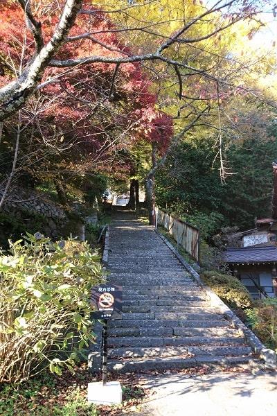 参道の長い石段の風景