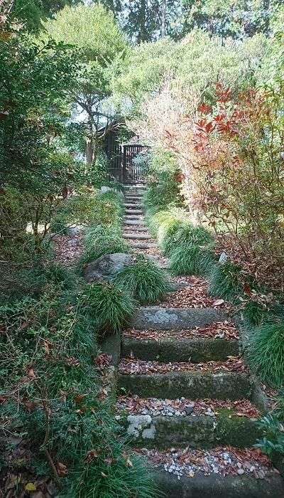 ひっそりと鎮座する熊野神社に行くための階段からの風景