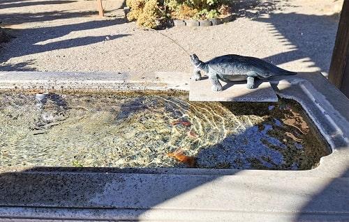 亀の石像の口から水が出ている風景