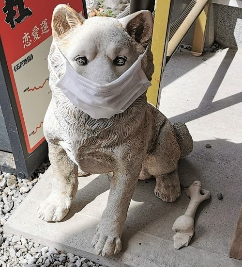 マスクをした石の犬