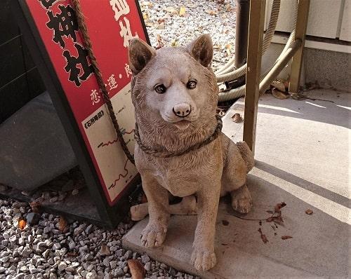 社務所にいる可愛い犬の像が繋がれている風景