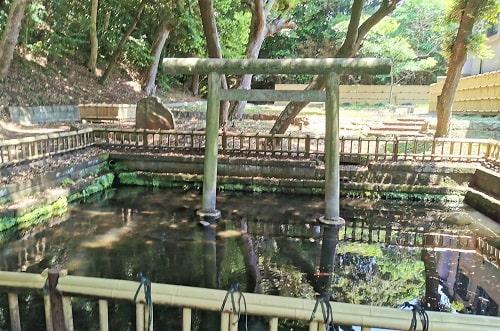 神池と鳥居の風景