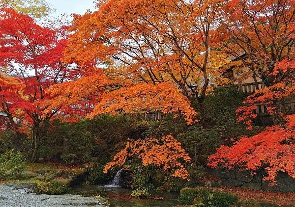 池と見事な紅葉の風景