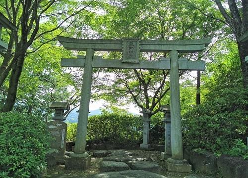 龍蛇神社の鳥居正面の風景