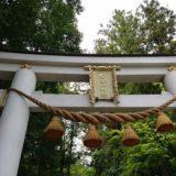 宝登山神社の二の鳥居アップの風景