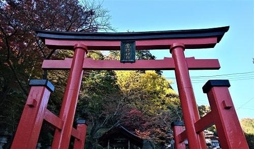 金櫻神社の一の鳥居正面の風景