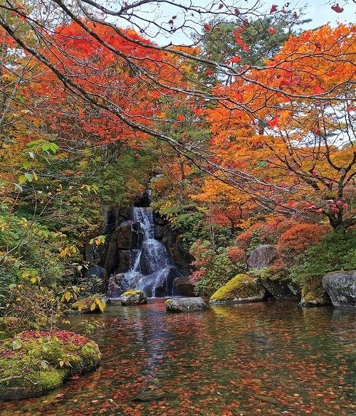 峯の滝と見事な紅葉の風景