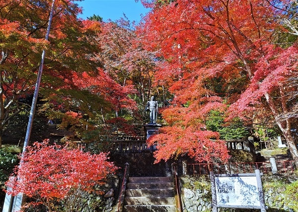東郷元帥の像と紅葉の風景