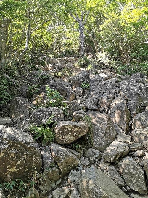 山道に岩が積み重なっている様子